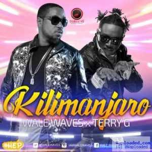 Wale Waves - Kilimanjaro ft. Terry G